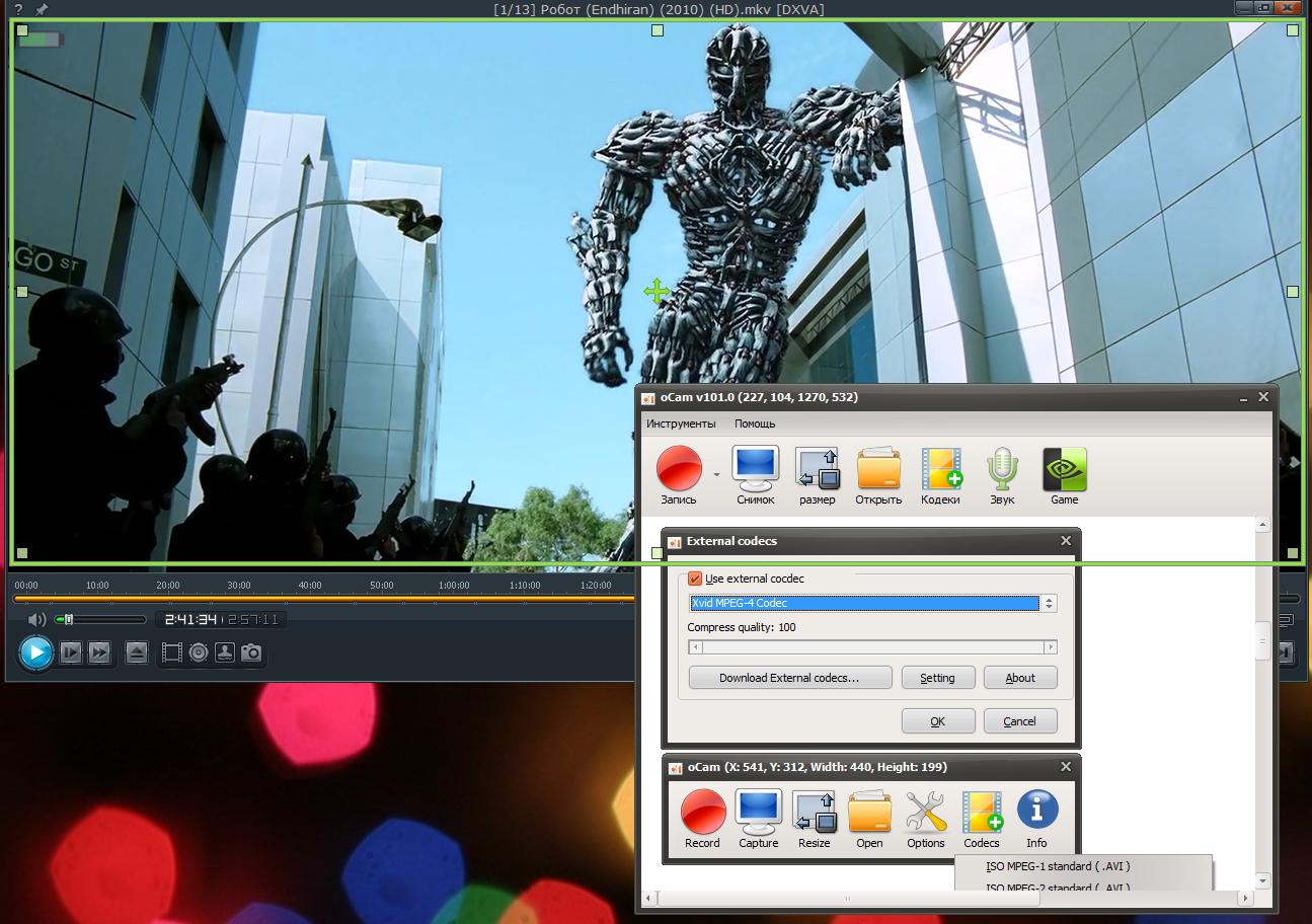 Ekrandaki videoyu kaydedin: özelliklerin gözden geçirilmesi ve öneriler